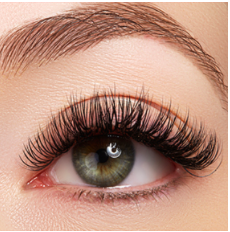 Brow Extension Certificate